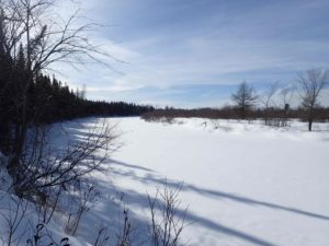 The frozen Moose River, winter 2015