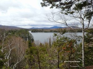 View from from lookout of nearly completed Prong Pond Trail in the Moosehead Lake region.