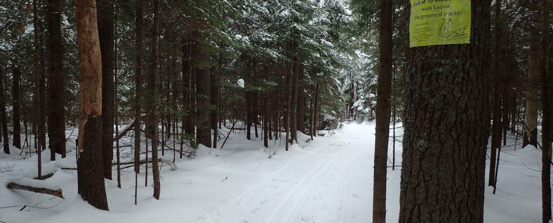 Nordic skiers welcome at Nickerson Tree Farm