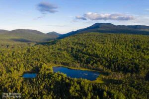 Aerial view of York Pond in Grafton Township, Maine and the surrounding forest.